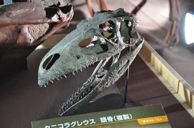 恐竜博特集:恐竜王国2012