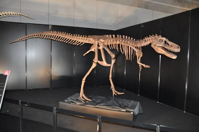 恐竜博特集:ダイノワールド2015...