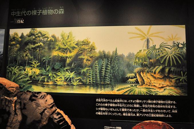 生命三十六億年(10) 三畳紀~ ...